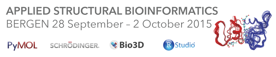 Workshop in Structural Bioinformatics
