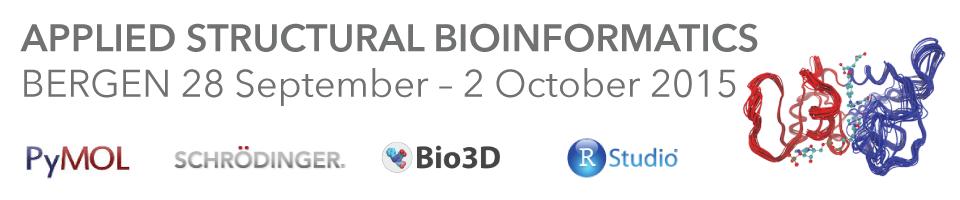 Workshop in Structural Bioinformatics